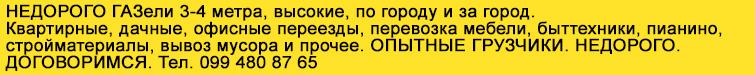 ГАЗель Левченко