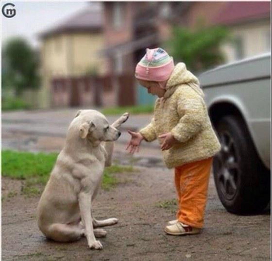 http://hi.dn.ua/images/narodnaya/2016-02-12-16-08-27-xH2-419004