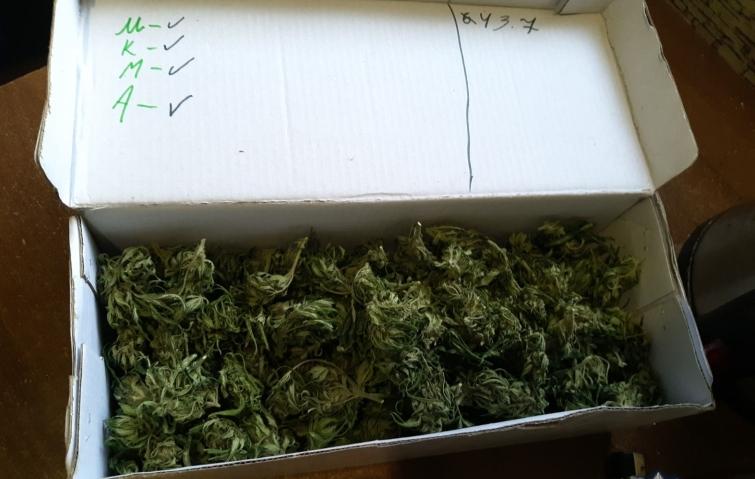 Коробка под коноплю марихуана урожай хранение